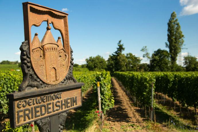 Heiraten in Friedelsheim Pfalz