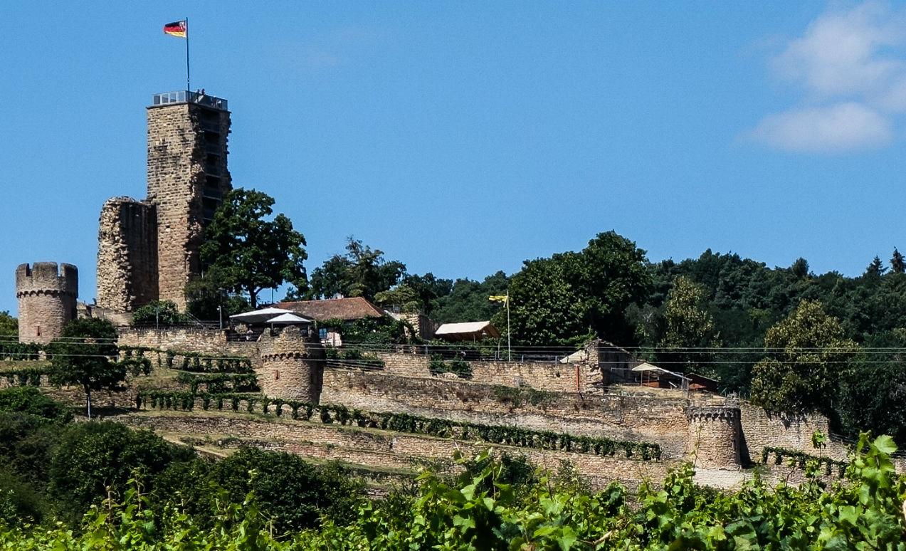 Hochzeit Burg Pfalz Wachtenburg Wachenheim